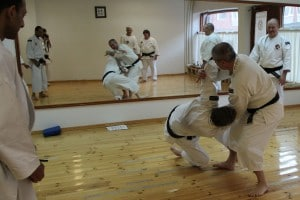 Anders-sensei explains omote nage