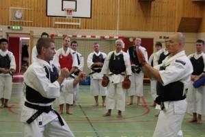 Åke-sensei undervisar övningar med mitts