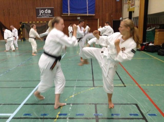 Kirsi och Mirja tränar goho.