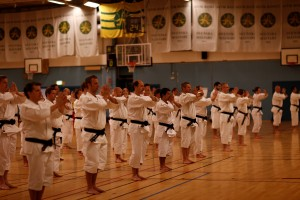 Picture from Shorinji Kempo Unity Koshukai Sweden 2014